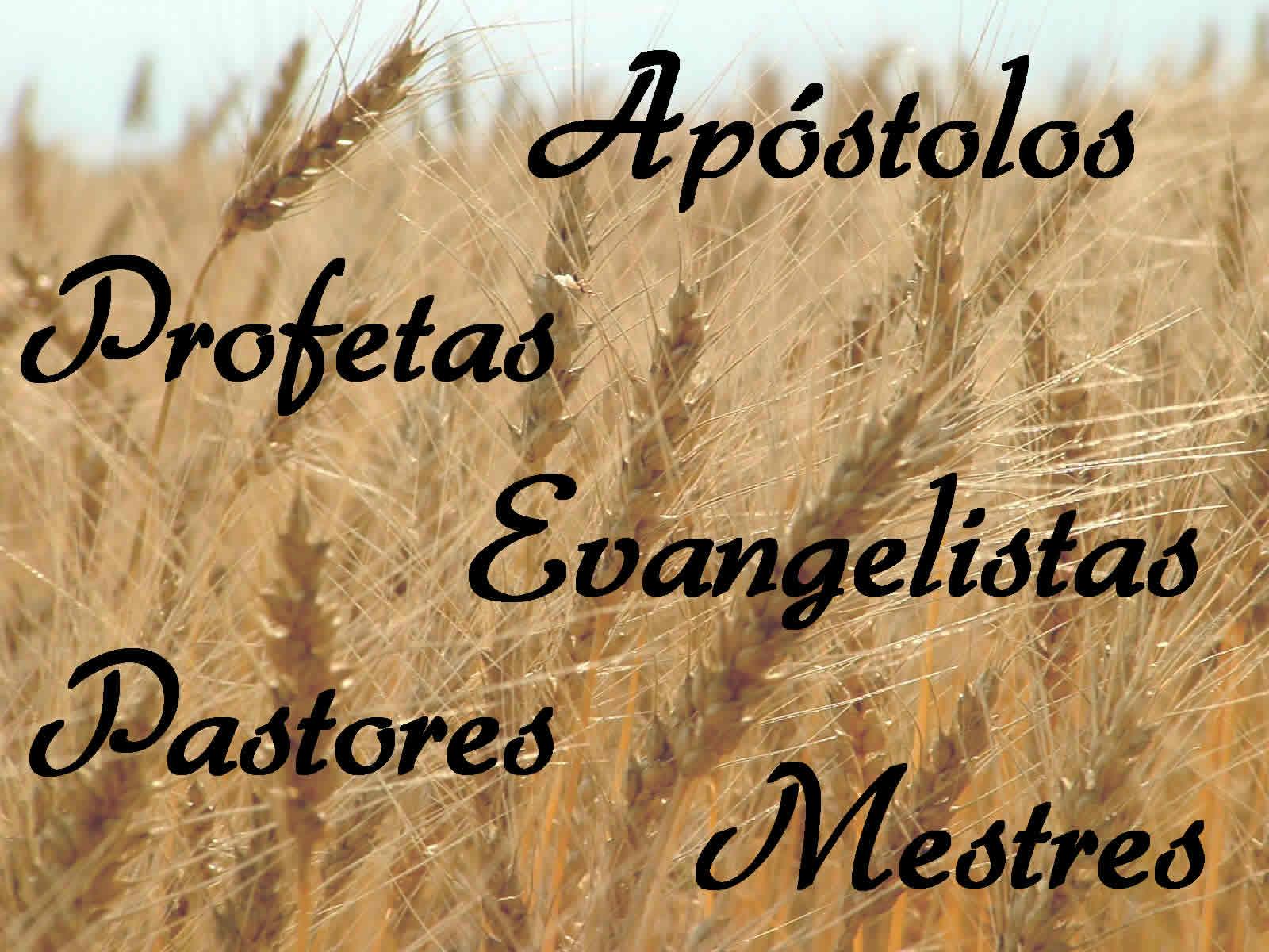 cinco ministérios